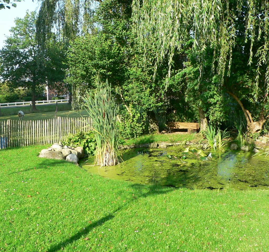 Familie Kunnen – Ureterp (7)